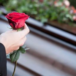 87 municipios y un funeral